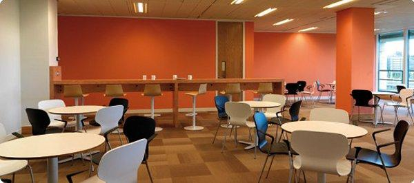 entrepreneur startup office team advice nyc